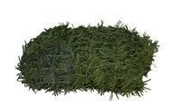 Net Bracken Medium 2x3m PS9-3 ON SALE SOON!